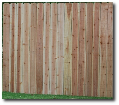 Solid cedar privacy fence panel, 6