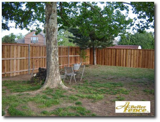 Board on board cedar fencing with full cedar trim