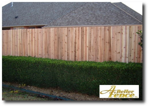 Decorative absolute privacy fence with out the top cap and trim