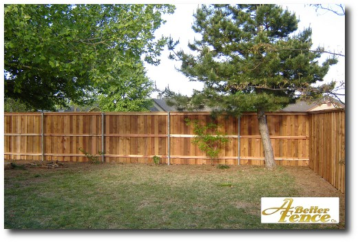 Back of fenceline with 3 Redwood stringers running along the back