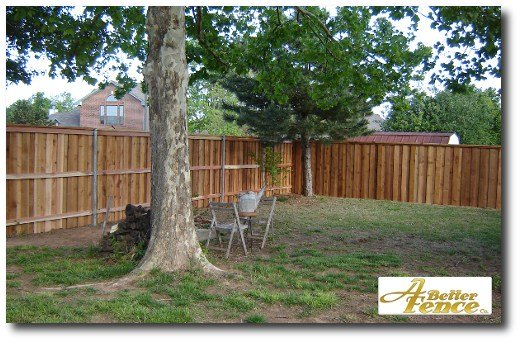 Nice backyard view.  Fence installed Summer 2010.