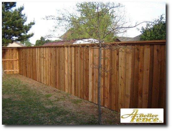 Board on board cedar fencing with full cedar trim